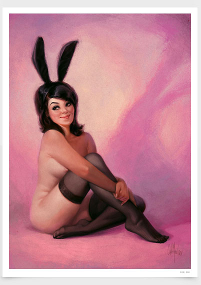 Bunny in Stockings