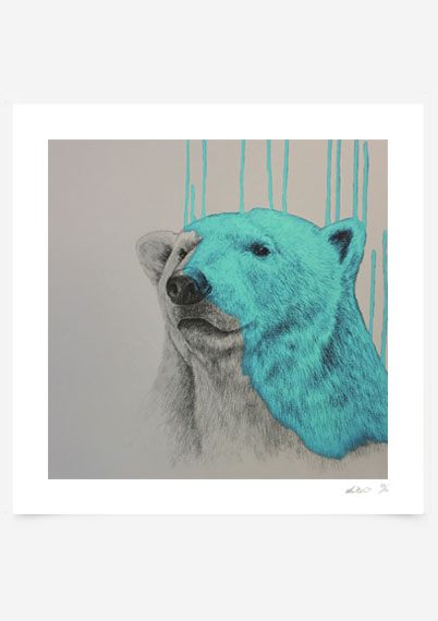Hey there Polar Bear - Aqua
